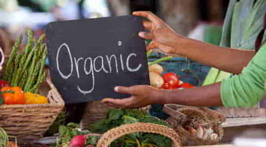 1068913248organic-items-a-glance-into-this-healthy-world.jpg